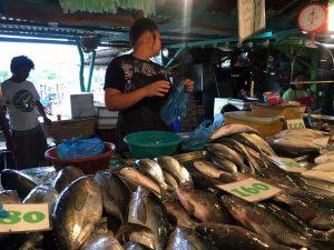 Paseo por el puerto y el mercado de Coron