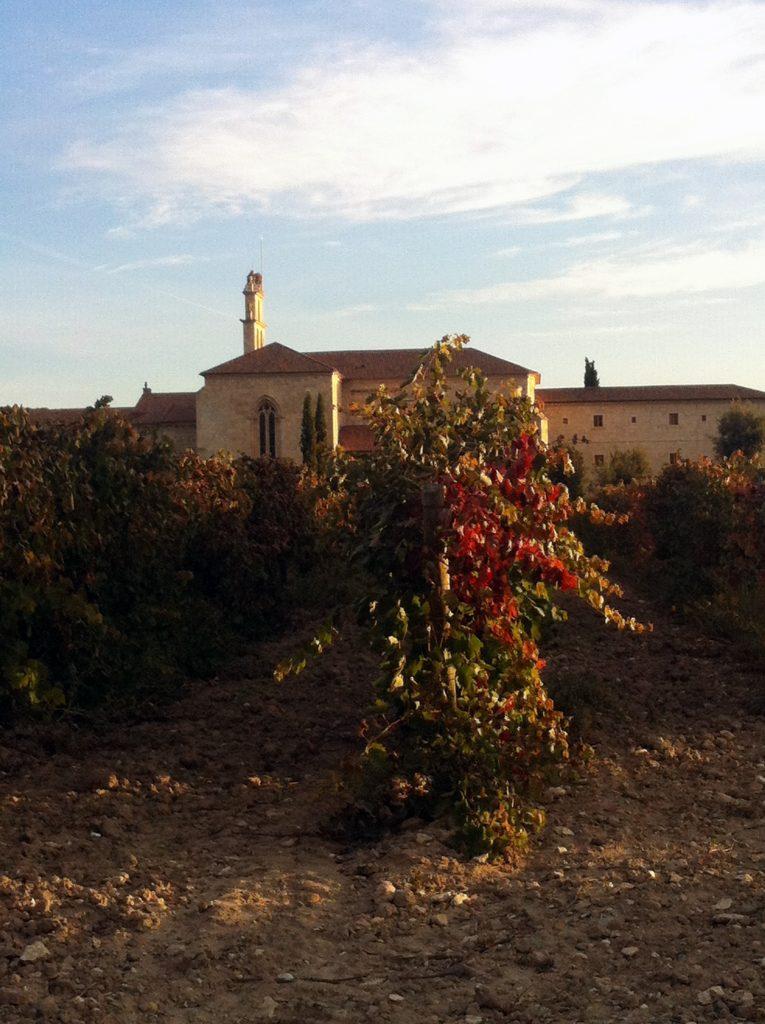 Enoturismo en Valladolid: 5 denominaciones de origen