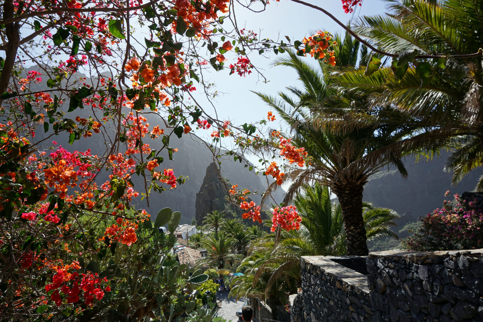 Tenerife Norte